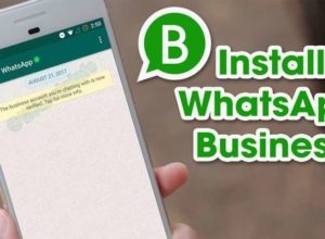 WhatsApp Business App Launched In India, Facilitates SMEs
